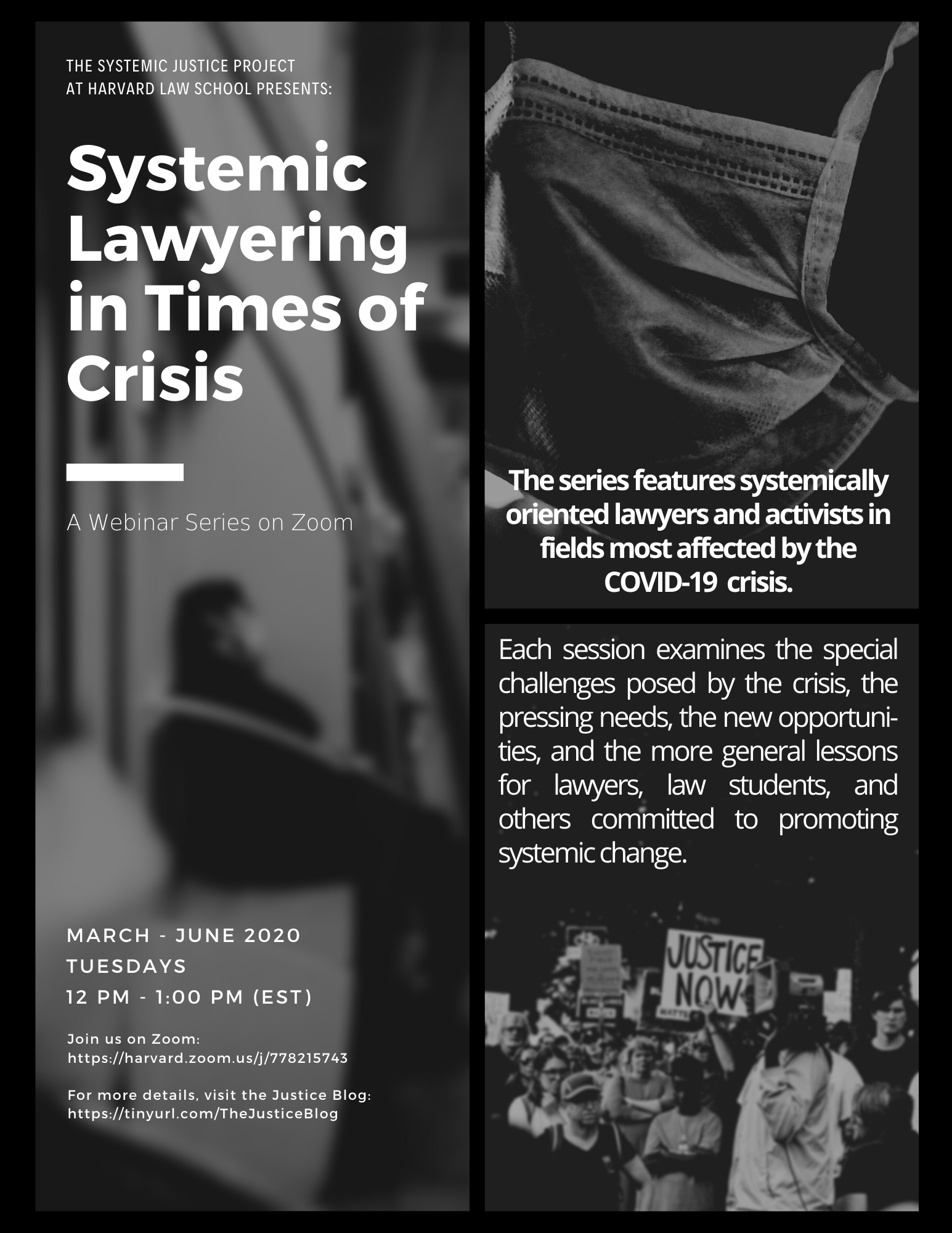 Systemic Lawyering Series Flyer